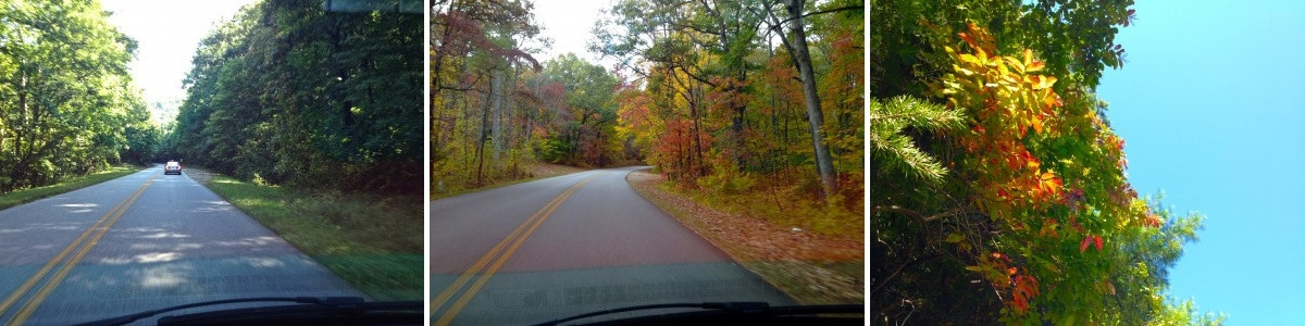 Autumn Scenic Drive on Asheville's Blue Ridge Parkway, Zen Asheville Inn & Spa Retreat